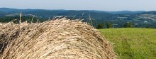 Hay bales, made by Dan and his farmhands, dot the lush farmland.